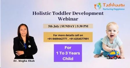 Holistic Toddler Development Webinar