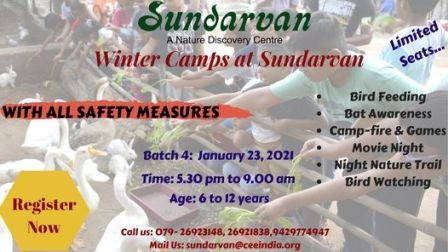 Winter Night Camp @ Sundarvan