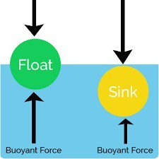 Buoyancy Science Experiments